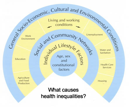 diagram of social determinants of health